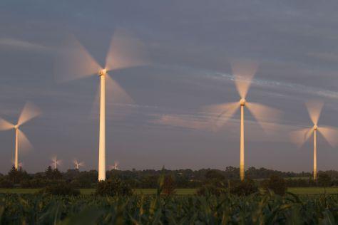 Langzeitbelichtung mit Windkraftanlagen hinter einem Maisfeld