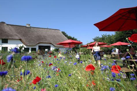 Das Galerie-Cafe Richhardshof in St. Peter-Ording ist gleichzeitig auch ein Hofcafe